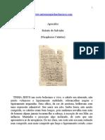 Apócrifos - Retrato do Salvador (Nicephorus Calíxtus).doc