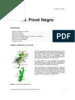 10. Pinot Negro