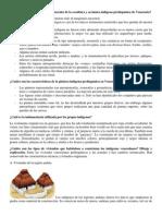 Características indígena prehispánica