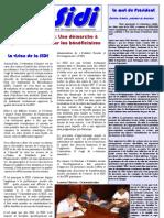 Info SIDI n°16 - La Viabilité Sociale