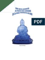 Una Meta Budista Gb