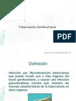 tuberculosis_genitourinaria.pdf