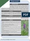 Mostra Parque natural Aval diagnòstica 4t primària IB