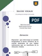 SULCUS  VOCALIS modificación de etiología.