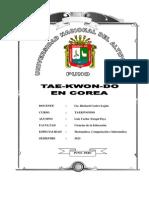 Trabajo de Tae-kwondo