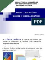 Aula Unidade 4 Quimica Organica