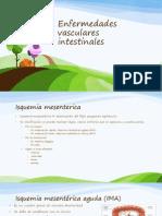 Enfermedades vasculares intestinales