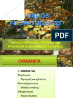 Signos y síntomas de Hongos. factores.pptx