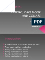 Option Floor and Caps Collars MFI FINAL PPT