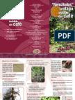 Nematodos en cafe.pdf