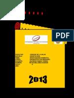 Reyes_Millones_Sharon_IF_Diagnostico.pdf