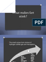 What makes fart stink.pptx
