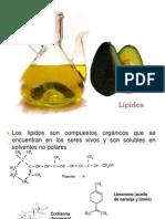 6.Lípidos (BQ)