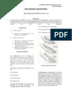 PRE-Informe. Transiciones.pdf