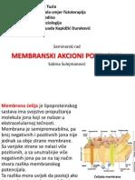 Membranski akcioni potencijal seminarski