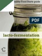 Lacto Fermentation