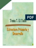 Tema 7 El Tallo