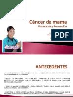 Cancer de Mama Grupo II