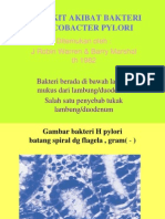 Penyakit Akibat Bakteri Helicobacter Pylori
