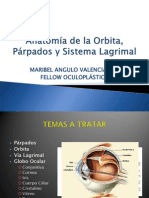 Anatomía de la Orbita, Párpados y Sistema Lagrimal