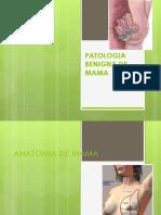 Patologia Benigna de La Mama