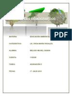 Indices Demograficos.docx
