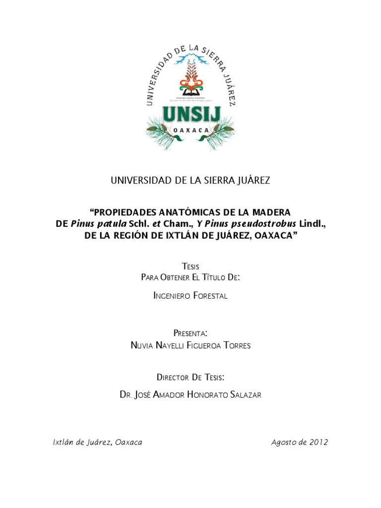 12. Nuvia Nayelli Figueroa
