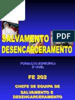 SD Chefe de Equipe