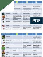 Calendario plantas