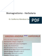 Biomagnetismo - Herbolaria