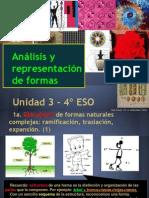 PV4º Unidad 3 - Análisis y representación de formas