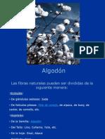 ALGODÓN Presentación Final