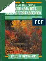 Panorama Del Nuevo Testamento (Paul N Benware) x Imagen97