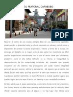 PASEO PEATONAL CARABOBO.docx