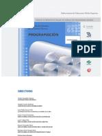 Técnico en Programacion 2011.pdf