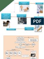 Metodologia de Dx Micologico