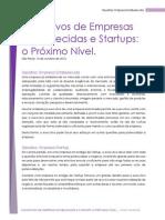 Executivos de Empresas Estabelecidas e Startups - o Próximo Nível