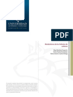 MetabolismoDeLosHidratosDeCarbono.pdf