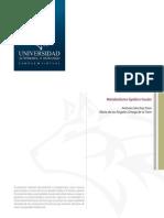 MetabolismoDeLipidos.pdf