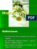 H2_Hidroponia