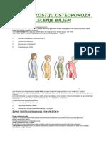 Bolest Kostiju Osteoporoza Lecenje Biljem
