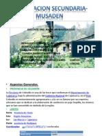 INFORMACION SECUNDARIA- MUSADEN.pptx