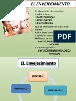 Teorias Del Envejecimiento