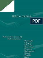 1. Bakteri Methan