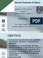 CDI 07-06