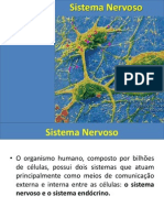 Aula+Sistema+Nervoso Prof.+Juliano+VI