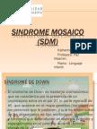 SINDROME MOSAICO