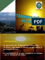 TERM.DE POZO introducion tema 1.pptx