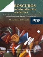 Claroscuros en La Profesionalizacion Academica