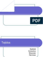 tejidos 2013.ppt